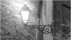 cropped-picture1light.jpg